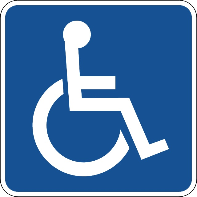 disabled-vector